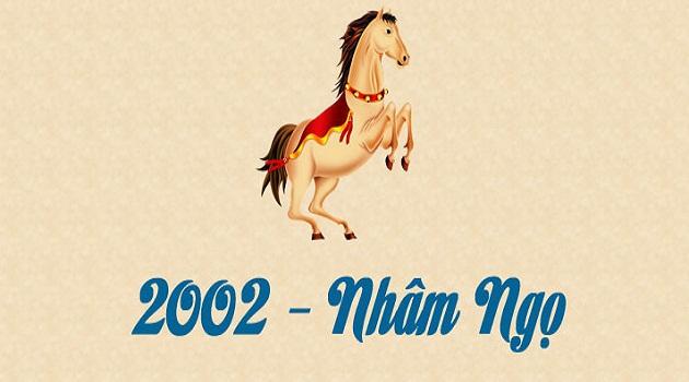 Tuổi Nhâm Ngọ sinh năm 2002 hợp màu gì?