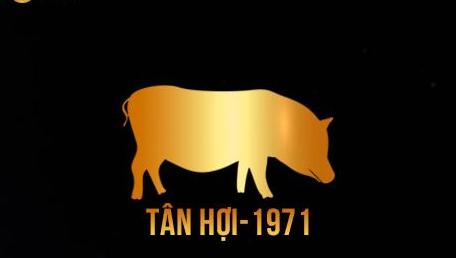 Tuổi Tân Hợi sinh năm 1971 hợp màu gì?