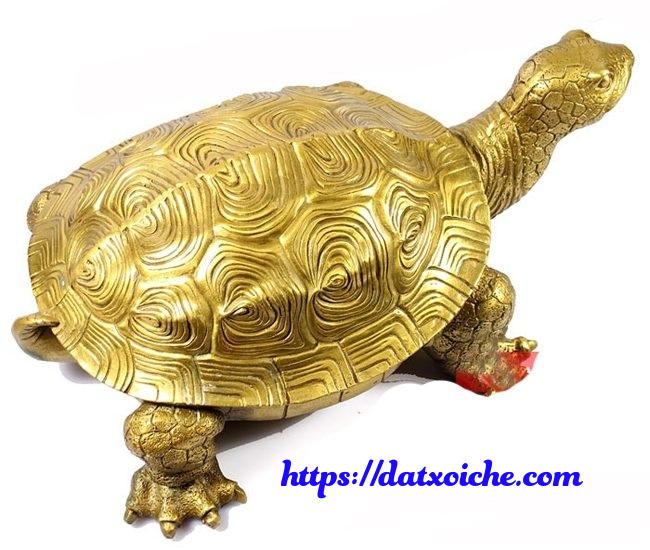 Nằm mơ thấy rùa vàng đánh con gì, là điềm gì?