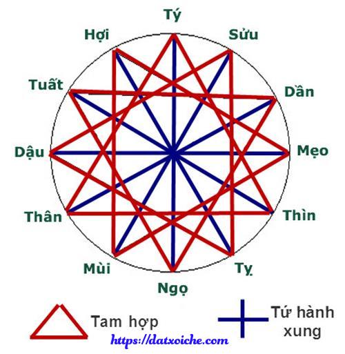 vòng tròn tam hợp tứ hành xung